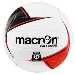 PALLADIUM Volley ball - Training